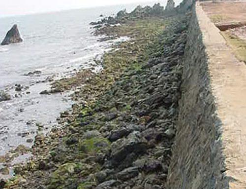 โครงการป้องกันการกัดเซาะชายฝั่ง บริเวณชายหาดเพคาบาน่า